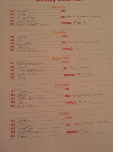 My fancy not fancy weekly plan
